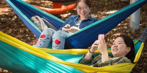 Two girls on their phone swinging on hammocks.